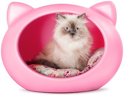 Des niches 100 design pour nos chats chroniques de chat for Niche exterieur chat